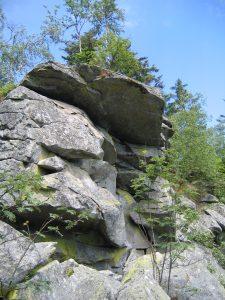 Bayerischer Wald , Juni 2007 046